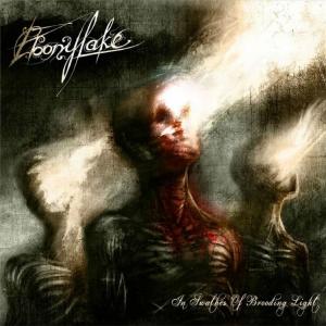 EBONYLAKE - In Swathes of Brooding Light - CD