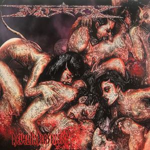 MISERY - Revel In Blasphemy - CD